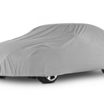 2013-03 CarCover01